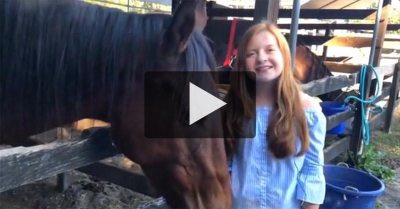 Horse Sense and Sensability Video Thumbnail